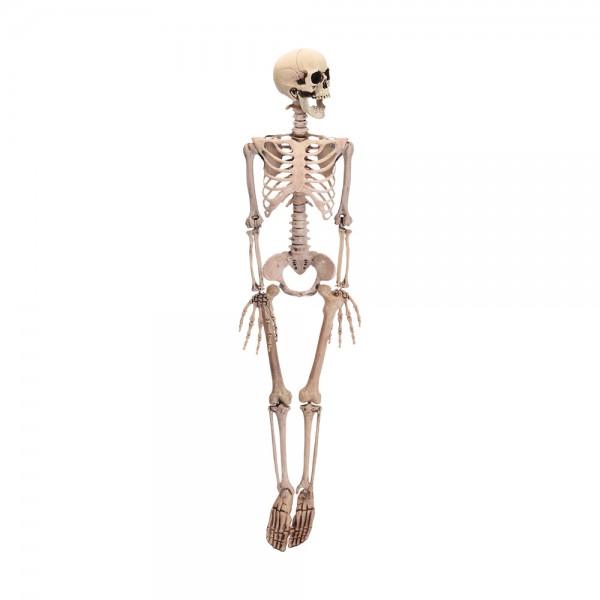 Figura esqueleto halloween 90cm